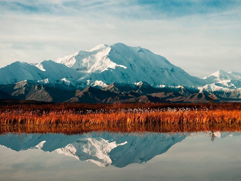 Visita virtual al Parque Nacional Denali, Alaska