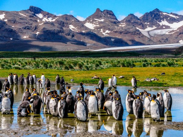 Patagonia Argentina - Cruceros en Patagonia
